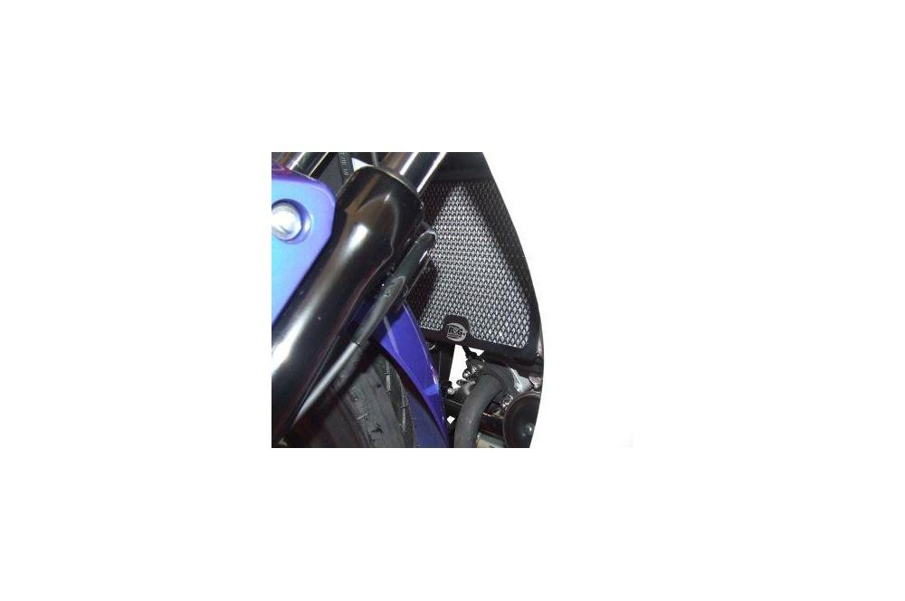 Protection De Radiateur R&G CBR125R 11-15