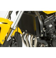 Protection de Radiateur R&G pour Hornet 600 (11-14)