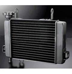 Radiateur D'eau pour CBR125 (04-16)