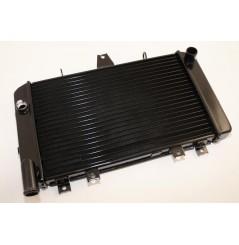 Radiateur D'eau pour ZRX1100 (97-00) ZRX1200 (00-06)