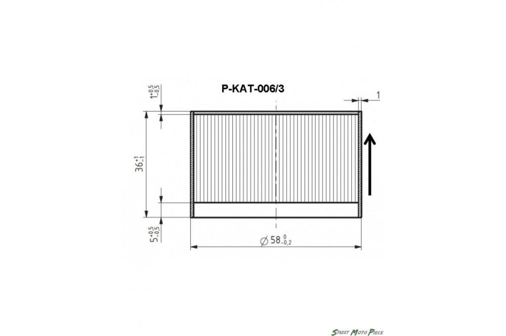 Catalyseur pour Silencieux Akrapovic P-KAT-006/3