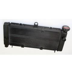 Radiateur D'eau pour Honda 600 HORNET 98-06