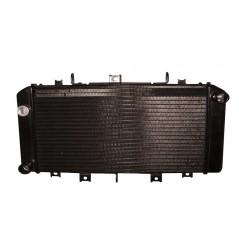 Radiateur D'eau pour Kawasaki Z750-S (04-06)