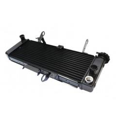 Radiateur D'eau pour Suzuki SV650 N et S (05-10)