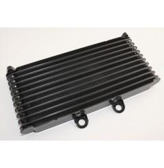 Radiateur D'huile pour Suzuki GSF1200 BANDIT 01-05