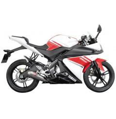 Ligne complète Scorpion Power Cone Inox Yamaha YFZ125R (08-13)