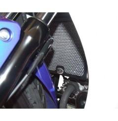 Protection de Radiateur R&G pour CBR125R (11-16)
