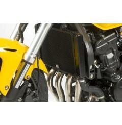 Protection de Radiateur R&G pour Hornet 600 (11-14)