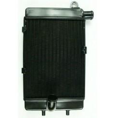 Radiateur D'eau Droit pour Tuono 1000 (02-05)