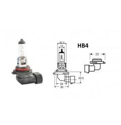 Ampoule HB4 12V-51W RING pour Moto-Quad-Scooter