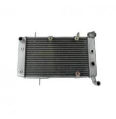Radiateur D'eau KSX pour Quad Kawasaki KFX 400 (04-06)