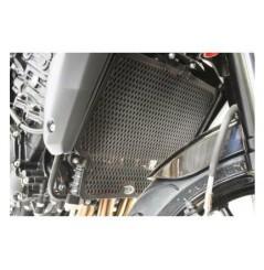Protection de Radiateur d'Eau et d'Huile R&G pour Speed Triple 1050 (2010)