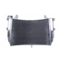 """Radiateur d'Eau pour Suzuki GSX-S 1000 et """"F"""" (16-18)"""