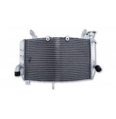 Radiateur d'Eau pour Yamaha R1 / R1M (15-20)