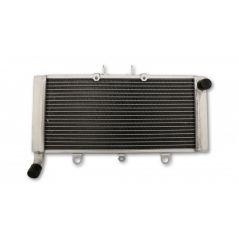 Radiateur d'Eau pour Honda CB 1300 F (03-12)