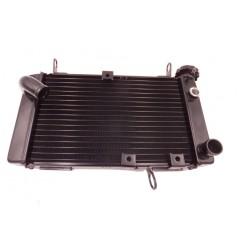 Radiateur D'eau pour Suzuki SV650 S/N 99-02